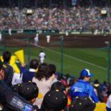 【最新版】阪神タイガースまとめ。初心者向け!注目選手・戦績など、チームの特徴が3分でわかる!