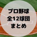 【2021年最新版】プロ野球チームまとめ – 全12球団の特徴が5分でわかる!